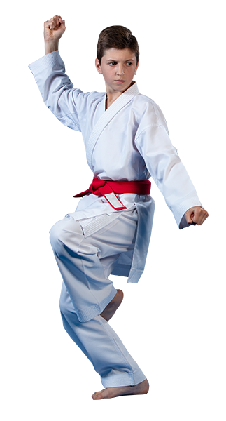 teen boy in a karate stance